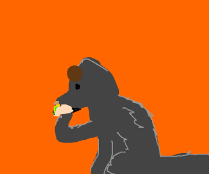 Wolf with brown thing on head eating a taco
