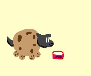 a cookie-dog drinks milk