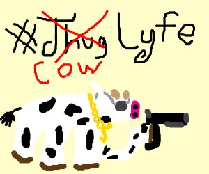 Cow Thugs
