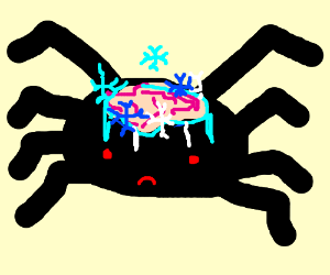 spider draw something