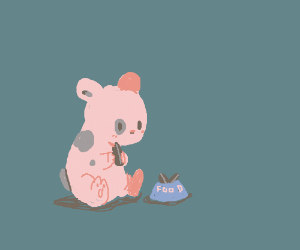 a hamster finds a tiny bowl of food