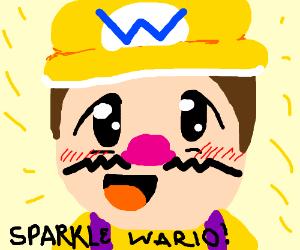 Wario Sparkle
