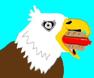 an eagle trying to eat a hot dog