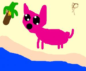 The Kawaii Pig From Moana