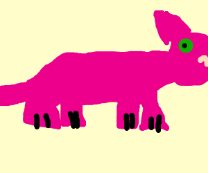 pinkcat in alola