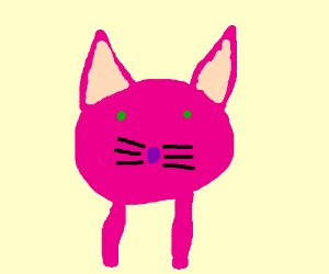 Pink cat with green eyes and short legs