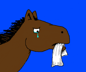 Sad brown horse holding a towel in it's mouth.