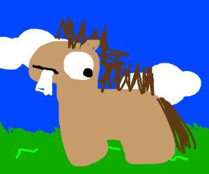 A dumb horse