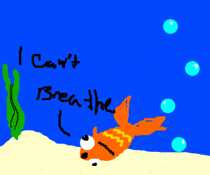Drowning goldfish for Can fish drown