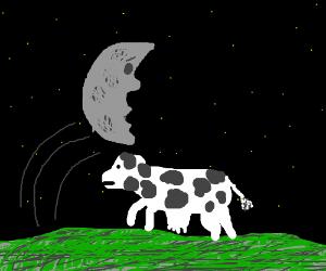 Luna Leaps O'er A Bovine