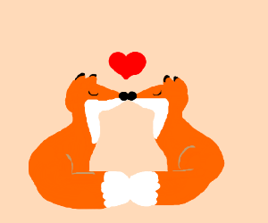Foxy foxes kissing