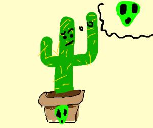 "Cactus wonders why his pot has ""alien"" on it."