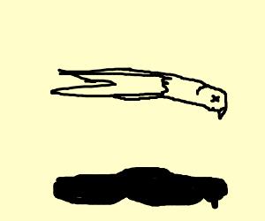 Dead eagle flying