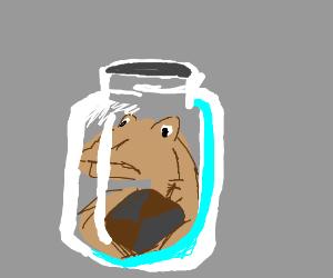 Jar-Jar in a jar