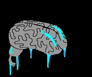 The brain has froze