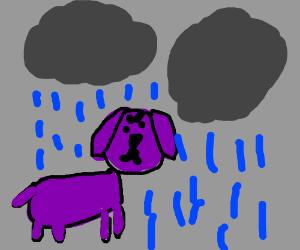 Clifton in the rain.