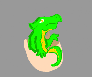 Tiny beaked dragon emerges from egg
