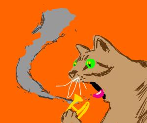 A cat smoking a trombone