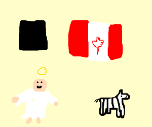 Black Canadian Angel Zebra