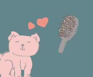 Pink cat likes brush