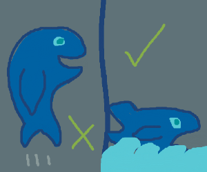 Whales can't jump