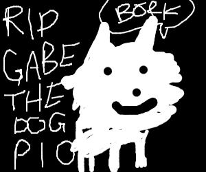 R.I.P. Gabe The Dog PIO