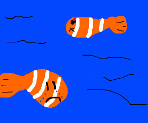 clown fish crying over clownfishs death