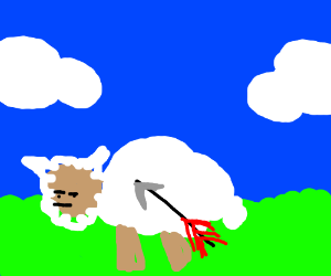 A sheep was shot with an arrow.