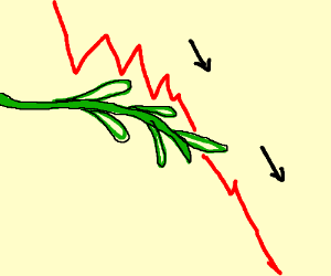 Decline olive branch
