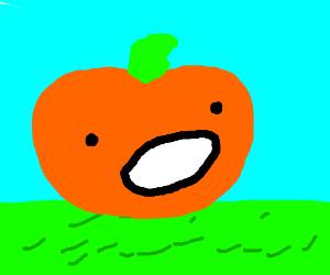 pumpkin suckle