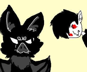 vampire looking at mad bat