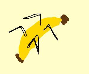 Banana spiders