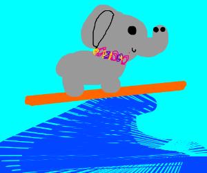Hawaiian elephant surfing on a wave