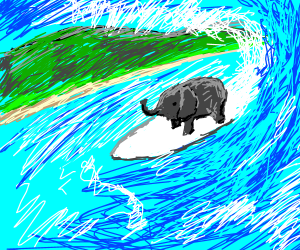 Baby elephant on a surf board