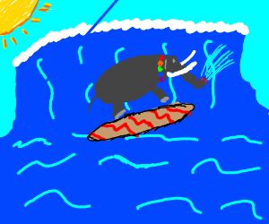 An elephant surfing