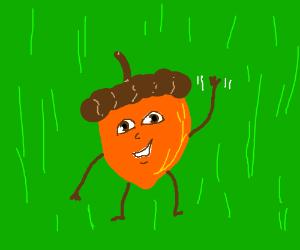 a living acorn