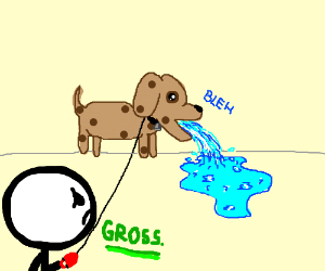 Dog spews goo while owner watches