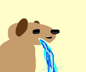 Gross dog vomits water