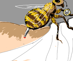 Bee stings at midnight