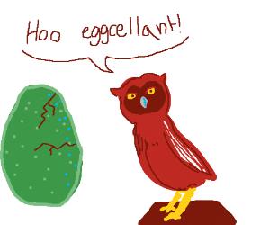 An owl makes an eggcellent pun