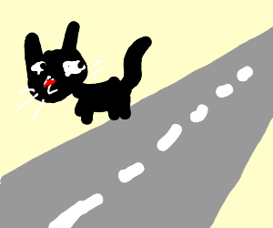 Cat by the road