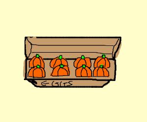 Egg Carton Full of Pumpkins