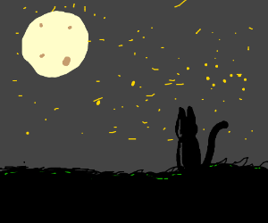 Kitty watches moon from the bushes