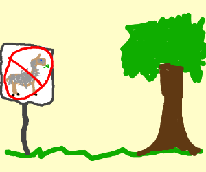 Llamma is not allowed in park