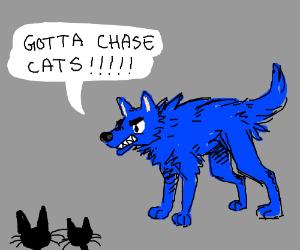 "Sanic the Dog - ""Gotta chase cats!"""