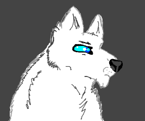 White wolf is not impressed