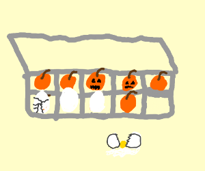 Small pumpkins in an egg box