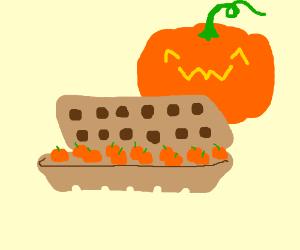 Pumpkin eggs in a carton
