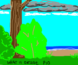 What is outside? (P.i.o)
