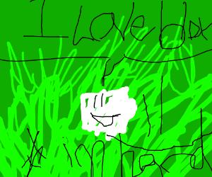retard saying i love roblox on grass backgroun